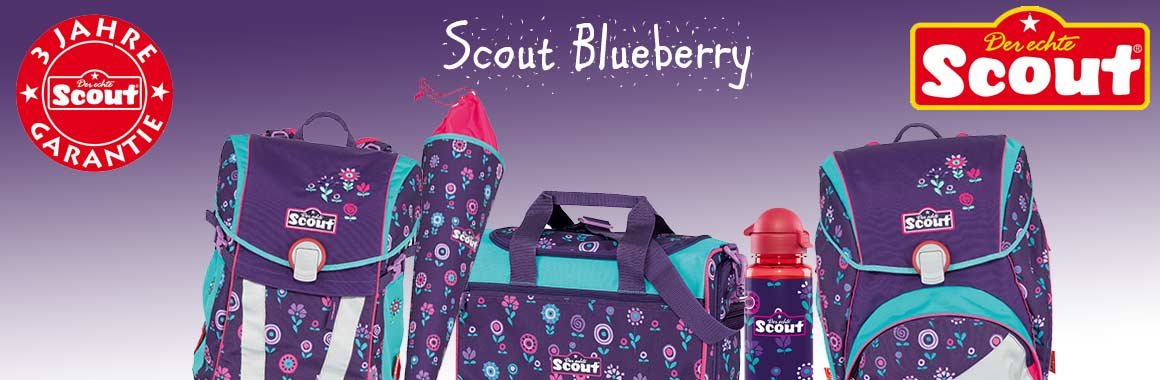 Scout Blueberry