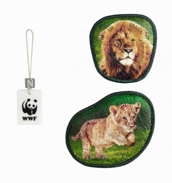 Step by Step Magic Mags WWF Little Lion