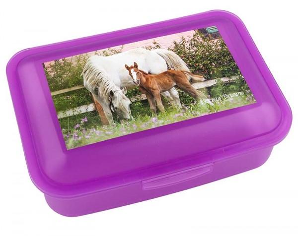 Brotdose Lunchbox Horses Dreams im Pferdemotiv